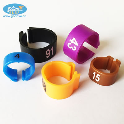 Plastic Clip Ring for Small Bird-lovebird