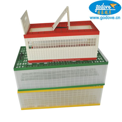 Foldable Plastic Transportation Cage for Pigeon